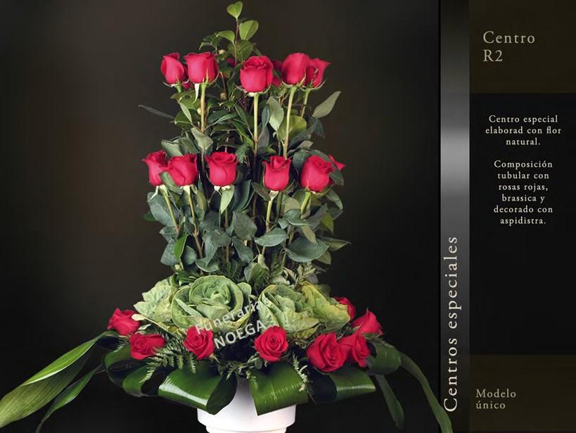 Centro de rosas rojas brassica y aspidistra funerarias for Jardin noega tanatorio gijon esquelas