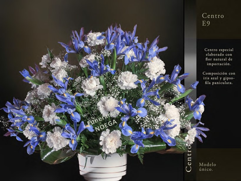 Centro de iris azul y gipsofila paniculata funerarias noega Jardin noega tanatorio gijon esquelas